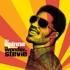 DJ Spinna presents  - The Wonder Of Stevie (Volume 3)