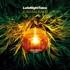 Jordan Rakei - Late Night Tales (Green Vinyl)