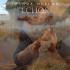 Joshua Hyslop - Echos