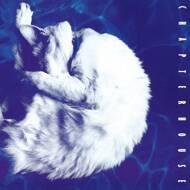 Chapterhouse - Whirlpool (Black Vinyl)