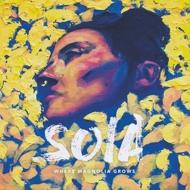 Soia - Where Magnolia Grows