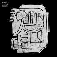 Mr. Käfer & Phlocalyst - Now / Again