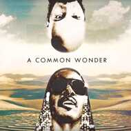 Amerigo Gazaway x Common vs. Stevie Wonder - A Common Wonder