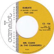 Mr. Clean And The Cleansers - Karate