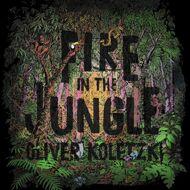 Oliver Koletzki - Fire In The Jungle