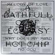 Hot Chip - A Bath Full Of Ecstasy (Clear Vinyl)