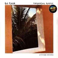 DJ Cam - Tropical Gypsy (RSD 2021)