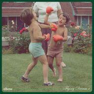 Elbow - Flying Dream 1 (Black Vinyl)