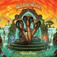 Tash Sultana - Terra Firma (Black Vinyl)