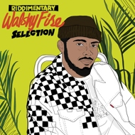 Walshy Fire Presents - Riddimentary Selection