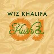 Wiz Khalifa - Kush & Orange Juice (Black Vinyl)