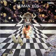 Human Egg - Human Egg