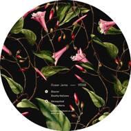 Ocean Jams - Glacier EP