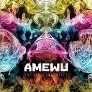 Amewu - Entwicklungshilfe [Orange Vinyl] (RSD 2020)