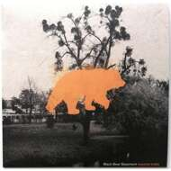 Black Bear Basement - Beyond Traits (Black Vinyl)