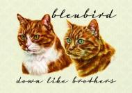 Bleubird - Down Like Brothers