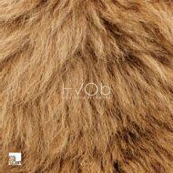 HVOb (Her Voice Over Boys) - Lion
