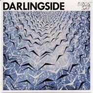 Darlingside - Birds Say