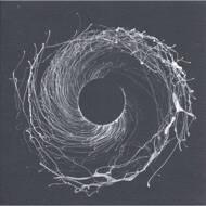 Dawn Of Midi - Dysnomia (Clear Vinyl)