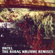 Dntel - The Robag Wruhme Remixes