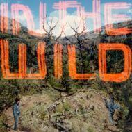 FaltyDL - In The Wild