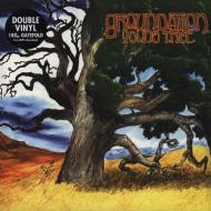 Groundation - Young Tree