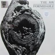 The Joy Formidable - A Minute's Silence