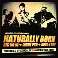 Kool G Rap, Big Noyd, Large Professor - Naturally Born