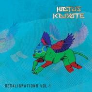 Hiatus Kaiyote - Recalibrations Vol. 1 (Black Vinyl)