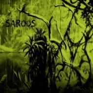 Saroos  - Morning Way