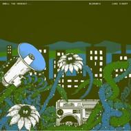 Bluke (BluRum13 & Luke Vibert) - Smell The Urgency