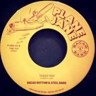 The Bacao Rhythm & Steel Band - Jungle Fever