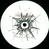 Theo Parrish - Long Walk In Your Sun