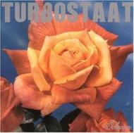 Turbostaat  - Schwan