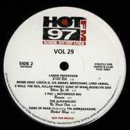 Various - HOT 97FM Vol. 29
